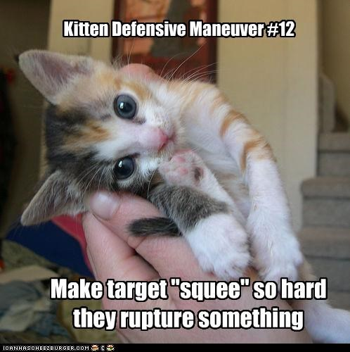 "Kitten Defensive Maneuver #12 Make target ""squee"" so hard they rupture something"