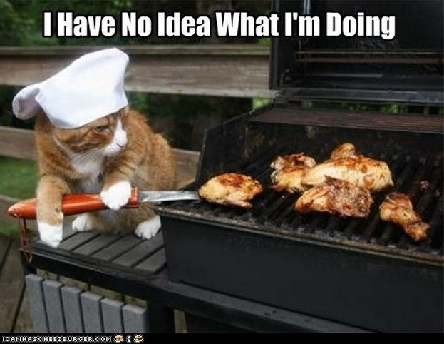 animals doing jobs badly