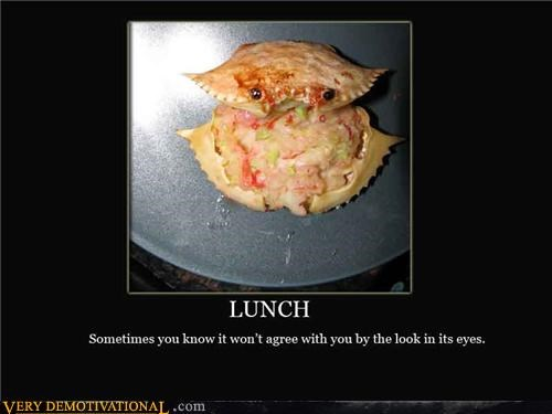 crab delicious lunch - 4499546624