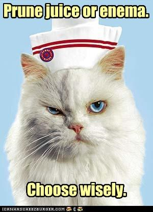 angry caption captioned cat catch 22 choice choose decision enema Hall of Fame nurse options prune juice wisely - 4500519680