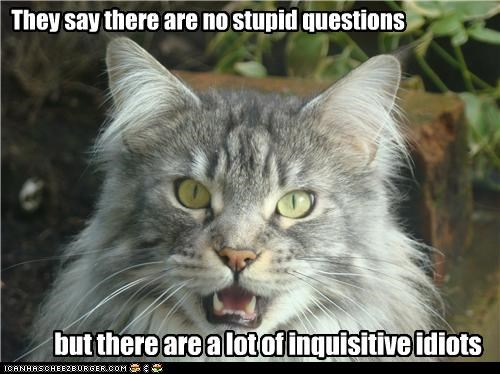 They say there are no stupid questions so that must make you an inquisitive idiot but there are a lot of inquisitive idiots