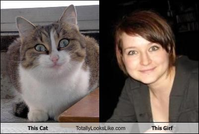 This Cat Totally Looks Like This Girf