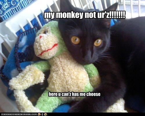 my monkey not ur'z!!!!!!! here u can'z has me cheese