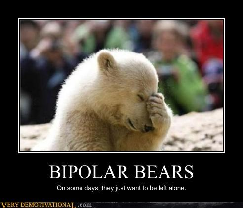 BIPOLAR BEARS On some days, they just want to be left alone.