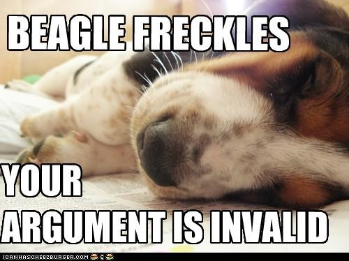 BEAGLE FRECKLES YOUR ARGUMENT IS INVALID