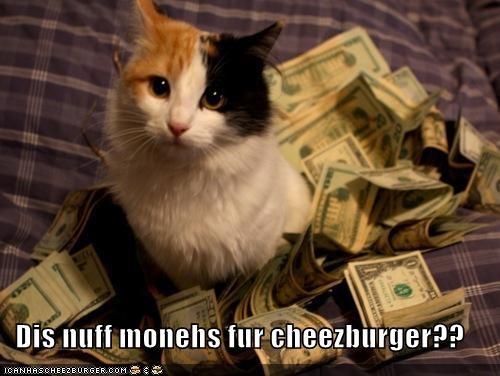 Cheezburger Image 4502982656