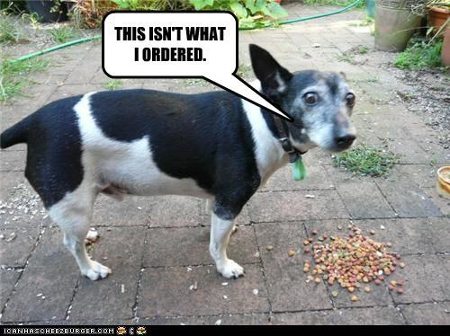 food kibble mixed breed noms this-isnt-my this-isnt-what-i-ordered whatbreed - 4503324672
