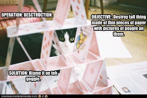 OPERATION: DESCTRUCTION. OBJECTIVE: Destroy tall thing made of thin pieces of paper with pictures of people on them. SOLUTION: Blame it on teh goggie.