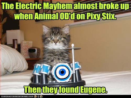 n The Electric Mayhem almost broke up when Animal OD'd on Pixy Stix. Then they found Eugene.