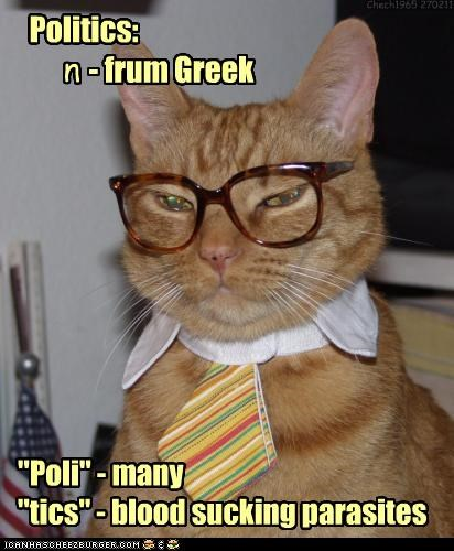 best of the week caption captioned cat defining definition glasses greek Hall of Fame noun origin poli politics prefix suffix tick tics tie - 4506014976