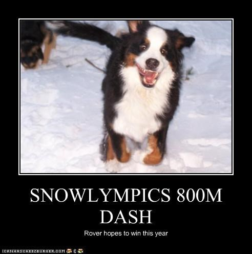 SNOWLYMPICS 800M DASH Rover hopes to win this year