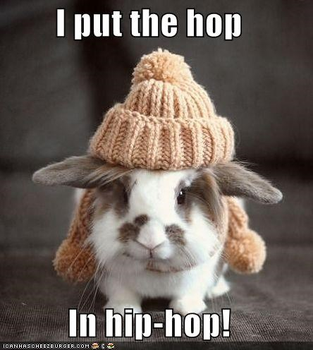 bunny caption captioned hat hip hop hop put putting rabbit