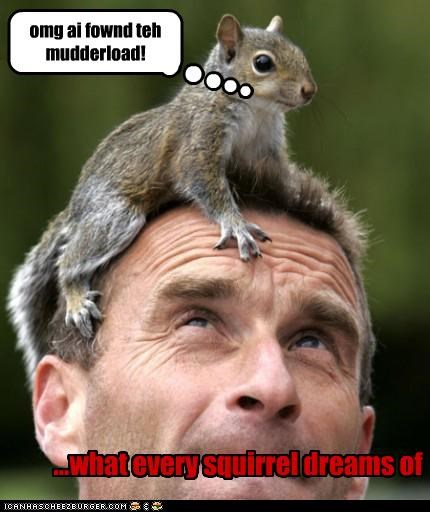 ...what every squirrel dreams of omg ai fownd teh mudderload!