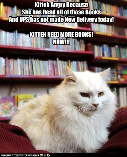 Kitteh Angry Because She has Read all of those Books And UPS has not made New Delivery today! KITTEH NEED MORE BOOKS! NOW!!!