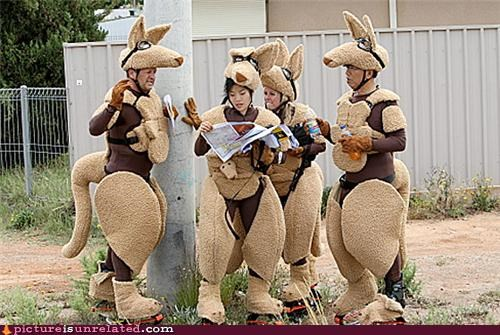 australia kangaroo kangaroo costumes Maps wtf - 4509132800