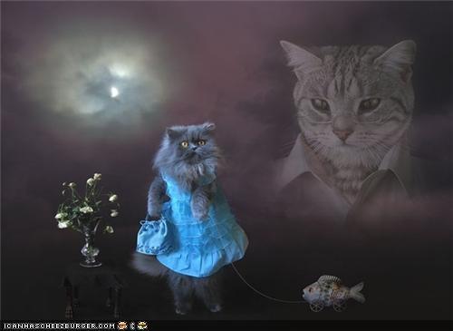 art best cat confusing dress internet photoshop proclamation statement weird wtf - 4509715712