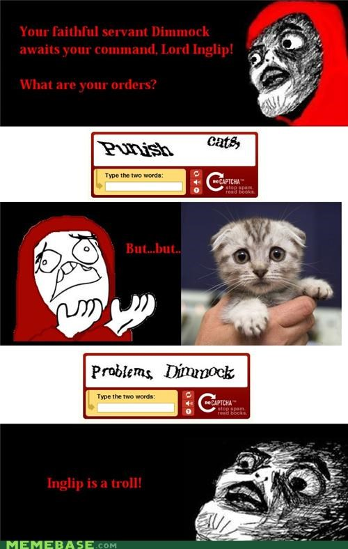 captcha,Cats,inglip,punish,troll