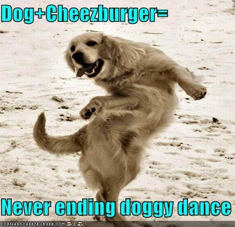Cheezburger Image 4510354688