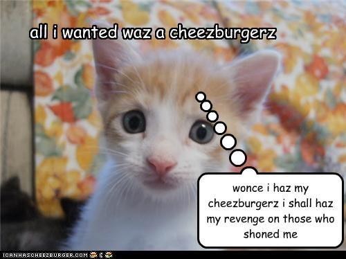 Cheezburger Image 4510355968