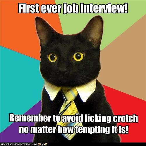 First ever job interview! Remember to avoid licking crotch no matter how tempting it is!