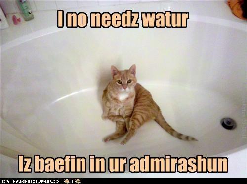 I no needz watur Iz baefin in ur admirashun KamikazeKatze 03-01-11