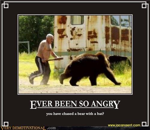 angry,bat,bear