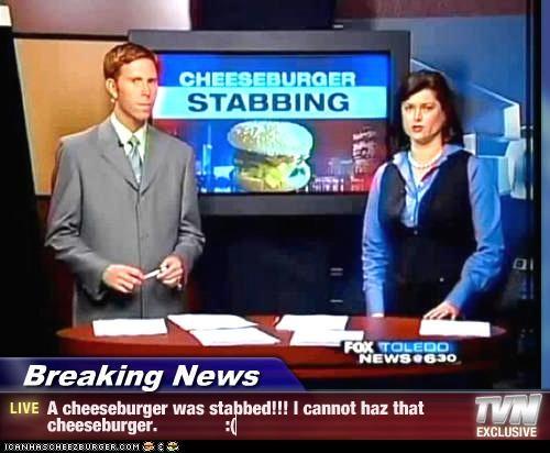 Cheezburger Image 4512098304
