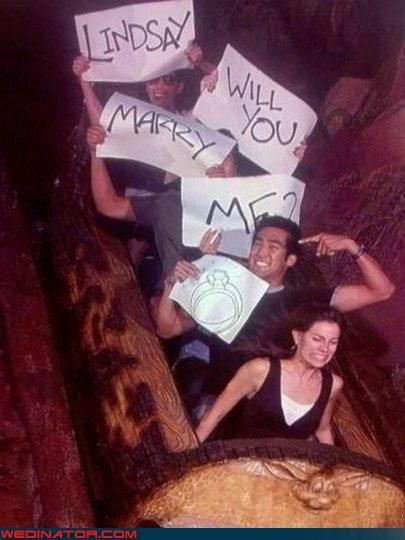 amusement park,funny wedding photos,proposal,roller coaster