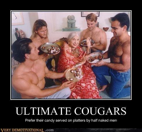 candy cougar sexy men - 4512851712