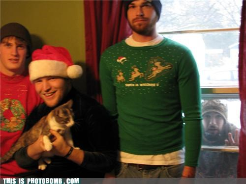 animals,Cats,forever alone,photobomb,sad but true,sweaters