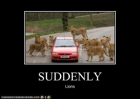 SUDDENLY Lions
