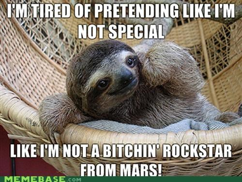 Charlie Sheen from mars im-special rockstar sloth - 4514029824
