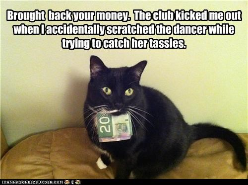 accident,accidentally,back,brought,caption,captioned,cat,dancer,innuendo,money,returned,scratched,tassel,tassels