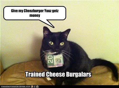 Cheezburger Image 4515281408