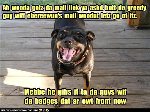 accident angry biting excuse FAIL mail mailman miniature pinscher police retrieval retrieving upset whoops - 4515338752