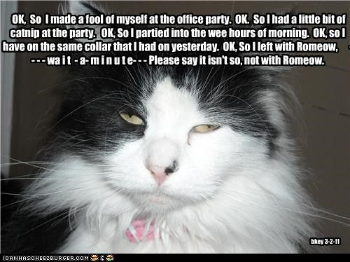 OK, So I made a fool of myself at the office party. OK. So I had a little bit of catnip at the party. OK, So I partied into the wee hours of morning. OK, so I have on the same collar that I had on yesterday. OK, So I left with Romeow, - - - - wa i t - a- m i n u t e- - - Please say it isn't so, not with Romeow. bkey 3-2-11