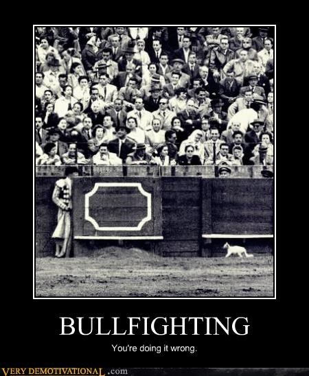 bullfighting,wrong,wtf