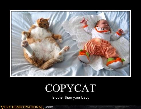 COPYCAT Is cuter than your baby