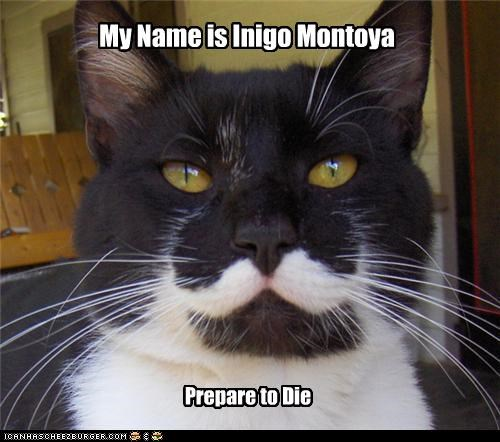 caption captioned cat die Hall of Fame inigo montoya name prepare quote the princess bride - 4516396800