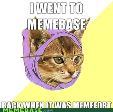 Hipster Kitty,memebase,memefort