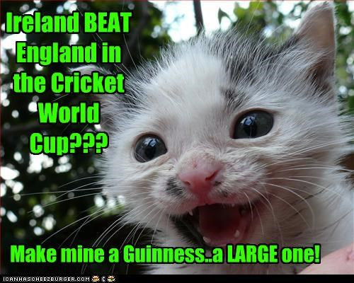 Ireland BEAT England in the Cricket World Cup??? Make mine a Guinness..a LARGE one!