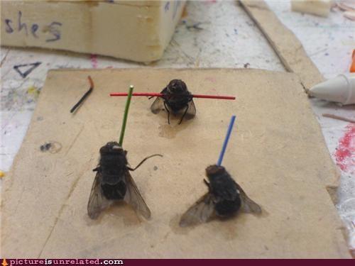 bug spray flies Jedi star wars - 4516650496