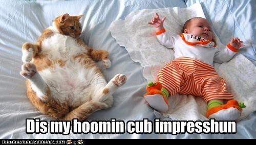 Dis my hoomin cub impresshun