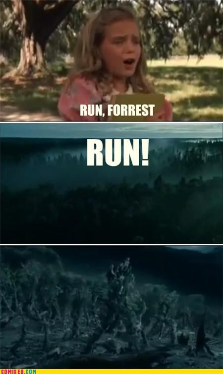 ents,Forrest Gump,Lord of the Rings,puns,run forrest run,trees