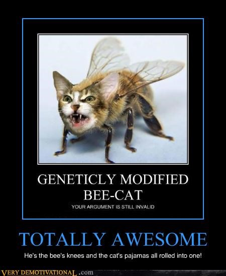 TOTALLY AWESOME He's the bee's knees and the cat's pajamas all rolled into one!