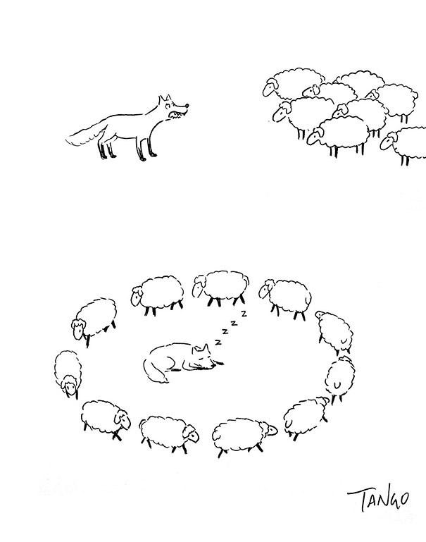 clever animals web comics - 4517893