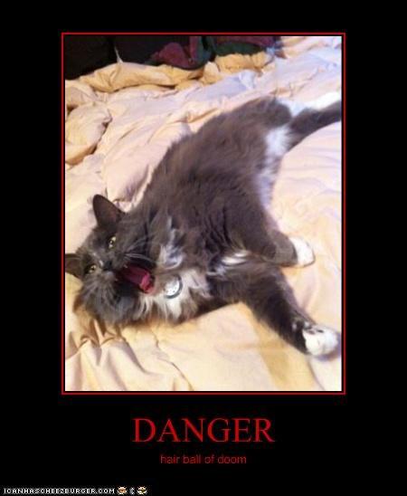 DANGER hair ball of doom