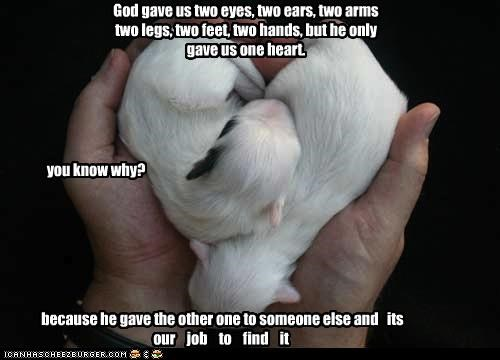 God gave us two eyes, two ears, two arms two legs, two feet, two hands, but he only gave us one heart. you know why? because he gave the other one to someone else and its our job to find it