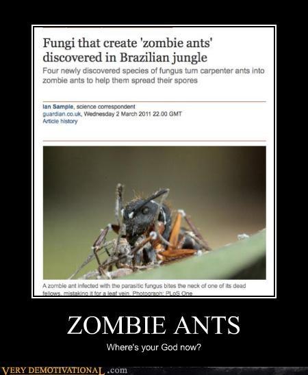 ants creepy fungi wtf zombie - 4518778624