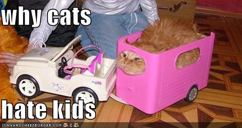 funny pic of kid treating cat as a toy